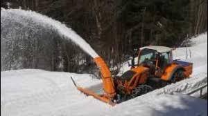 Sgombro neve